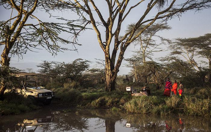 """与野生动物们相伴而眠,肯尼亚有座360度全景五星""""鸟巢""""酒店"""