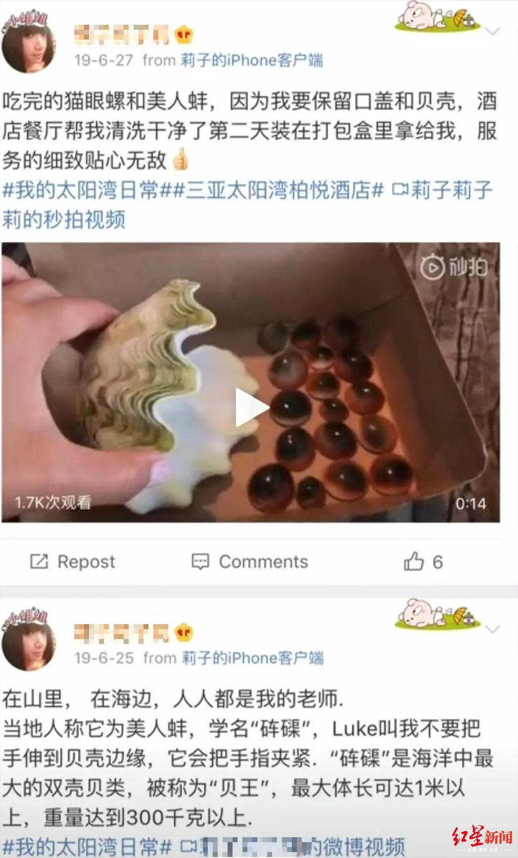 知名演员举报三亚太阳湾柏悦酒店非法捕捞国家二级保护动物