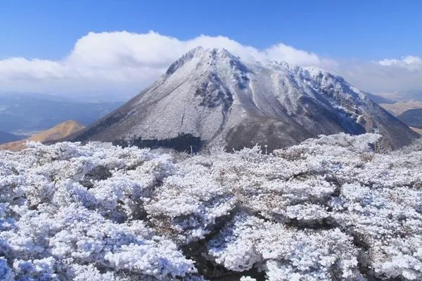 日本7个冬日限定绝景 春节还不扎堆
