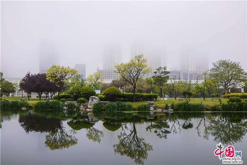青岛五月,湿意家园里的诗意寻觅(图)