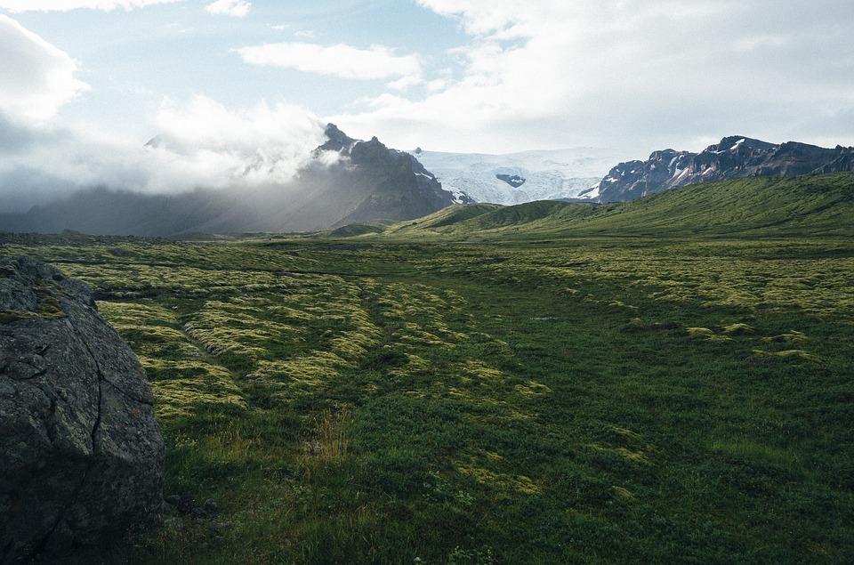 冰岛人的存在感都是黑暗料理刷出来的!