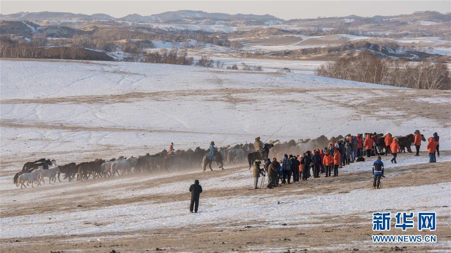冬季跑马引游客