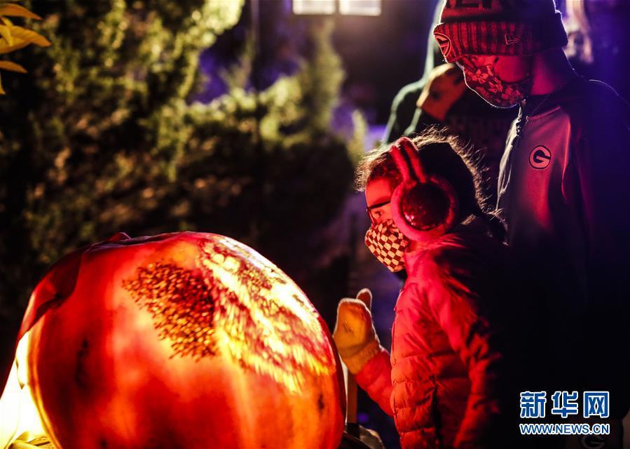 美国芝加哥植物园举办南瓜灯展