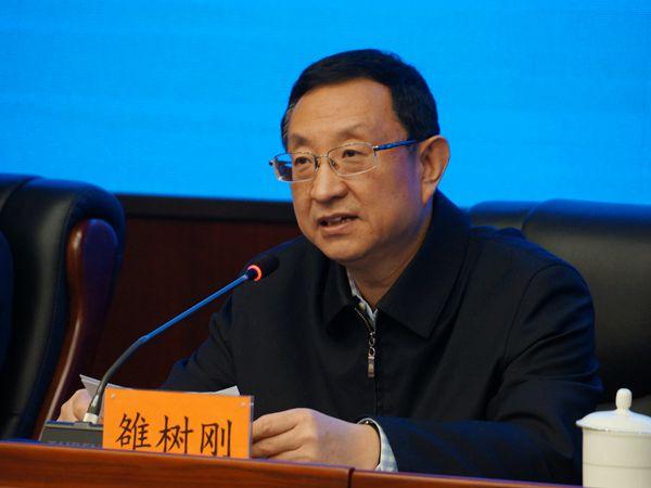 文化和旅游部部长雒树刚:推动中华文化走向世界