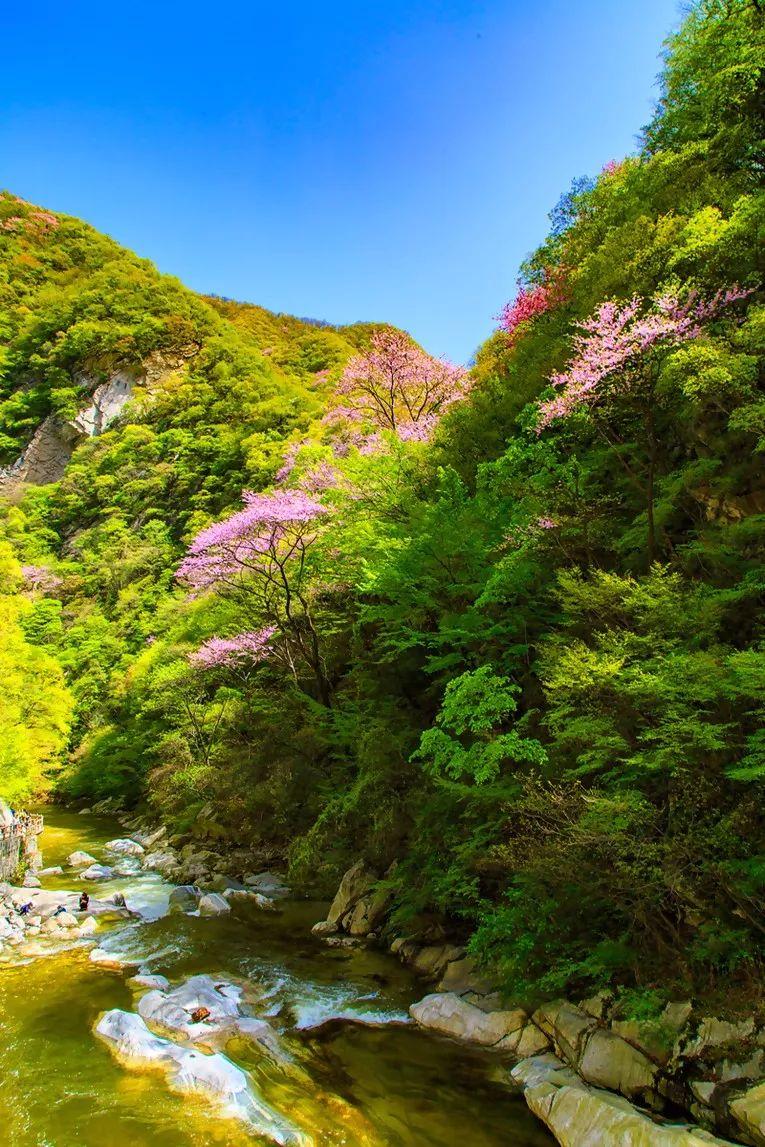 """西安附近有座""""秦岭小九寨"""" 还有条养在深闺的绝美老国道"""