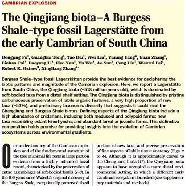 """湖北发现""""清江生物群"""" 或为已发现寒武纪化石的最大宝库!"""