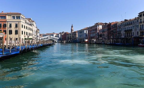隔离之下,威尼斯运河变清,天鹅和海豚都来了