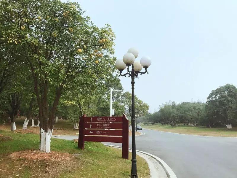 试睡报告,南城中的一抹绿——江西前湖迎宾馆