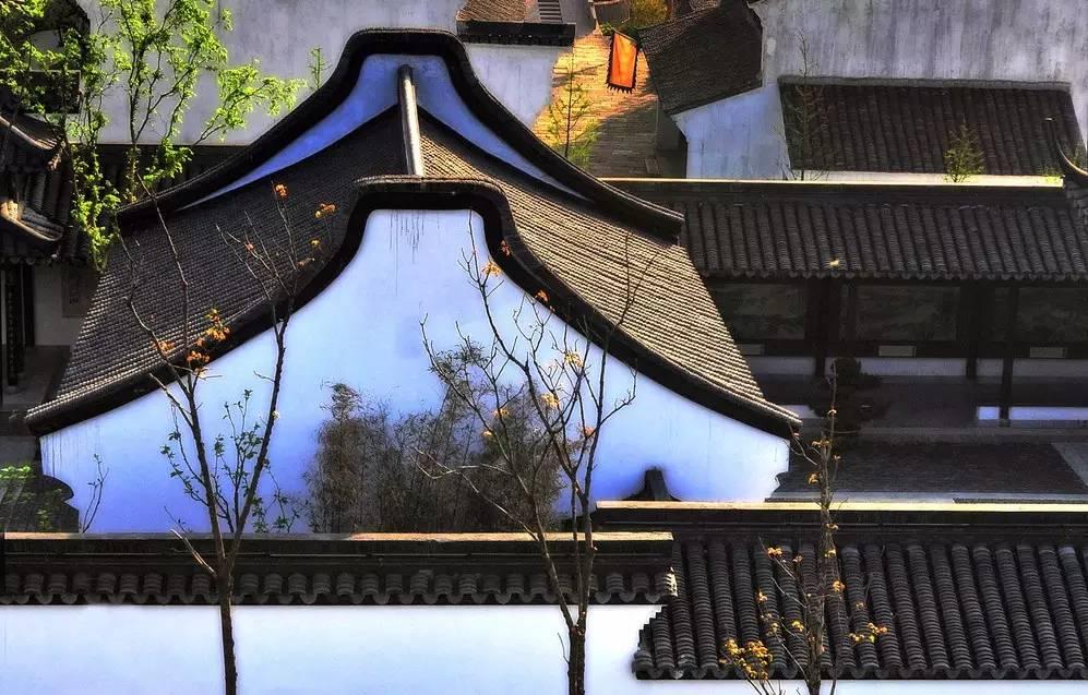 杭州西溪喜来登度假酒店体验记