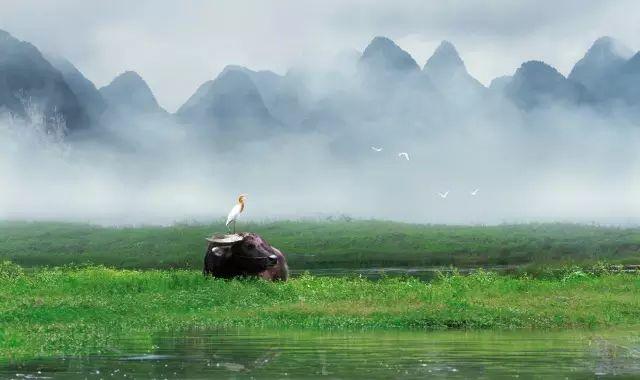 全球最美江畔竟私藏了一家山水栖居酒店