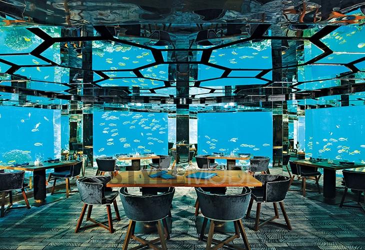 美呆了 探访8家拥有海底世界美景的酒店
